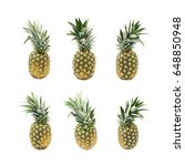 ripe pineapple fruit isolated... | Shutterstock . vector #648850948