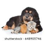 Stock photo puppy of a tibetan mastiff hugs a little kitten isolated on white background 648905746