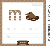 letter m lowercase tracing... | Shutterstock .eps vector #648919402