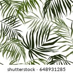 seamless pattern  palm leaves | Shutterstock .eps vector #648931285