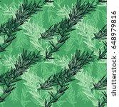 hand drawn rosemary pattern....   Shutterstock .eps vector #648979816