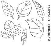 vector set of leaves | Shutterstock .eps vector #649023988