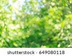 beautiful green bokeh light in... | Shutterstock . vector #649080118