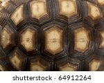 Stock photo close up of african spurred tortoise shell geochelone sulcata year old 64912264