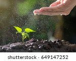 agriculture   growing plants  ... | Shutterstock . vector #649147252