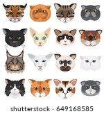 Cats Heads Icons Emoticons...