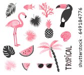 tropical set in pink and black... | Shutterstock .eps vector #649184776