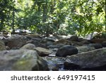 forest river landscape with... | Shutterstock . vector #649197415