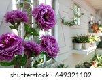 flower in the garden. | Shutterstock . vector #649321102