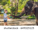 Woman Feed The Elephant In The...
