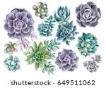 Succulents Painted With...