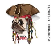 Portrait Of A Pug In Pirate Ha...