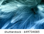 blue and green chicken feathers ... | Shutterstock . vector #649734085