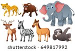 wild animals on white... | Shutterstock .eps vector #649817992