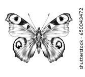 butterfly with open wings top... | Shutterstock . vector #650043472