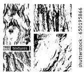 tree bark textures set isolated ... | Shutterstock .eps vector #650195866