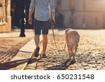Stock photo morning in the city young man walking with his dog on the old street at golden sunrise prague 650231548