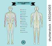 Reflexology Chart Of  Body...