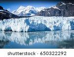 glacier bay national park alaska | Shutterstock . vector #650322292