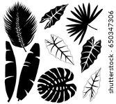 tropical leaves set  black... | Shutterstock .eps vector #650347306