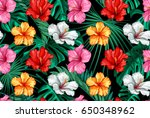 vector tropical leaves and... | Shutterstock .eps vector #650348962
