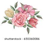 hand painted watercolor... | Shutterstock . vector #650360086