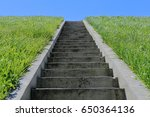 Concrete Stairs In The Green...