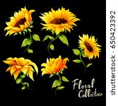 flowers. floral collection. set ... | Shutterstock .eps vector #650423392