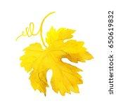 autumn grape leaf with swirl.... | Shutterstock . vector #650619832