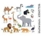 african fauna species. cute... | Shutterstock . vector #650657536