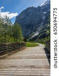 Summer Alpine Valley With...