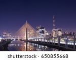sao paulo brazil south america...   Shutterstock . vector #650855668