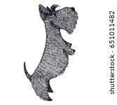 Scottish Terrier Hand Drawing...