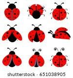 lady bug icon set  | Shutterstock .eps vector #651038905