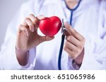 doctor or cardiologist holding... | Shutterstock . vector #651065986