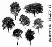 black tree silhouettes on white ... | Shutterstock . vector #651270418