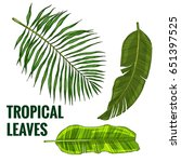 set of tropical leaves ... | Shutterstock .eps vector #651397525