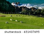 new zealand landscape with... | Shutterstock . vector #651437695