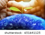 Hands protect Growing plants on globe. Save Earth Planet World Concept. World environment day. safe the world