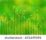 background | Shutterstock . vector #651649396