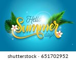 hello summer days and summer... | Shutterstock .eps vector #651702952