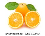 orange on a white background | Shutterstock . vector #65176240