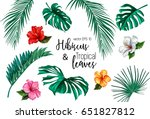 set of stylized tropical plants ... | Shutterstock .eps vector #651827812