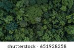 Aerial Top View Of The Forest ...