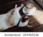 Latte And Sleeping Cat With Th...