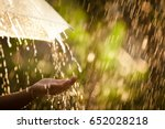 Woman hand with umbrella in the ...