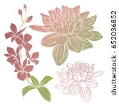 set of flowers. flower vector... | Shutterstock .eps vector #652036852