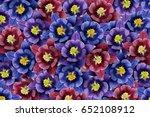 floral background. blue purple... | Shutterstock . vector #652108912