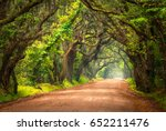 tree lined dirt road southern... | Shutterstock . vector #652211476