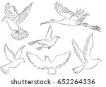 bird pigeons stork flying... | Shutterstock .eps vector #652264336